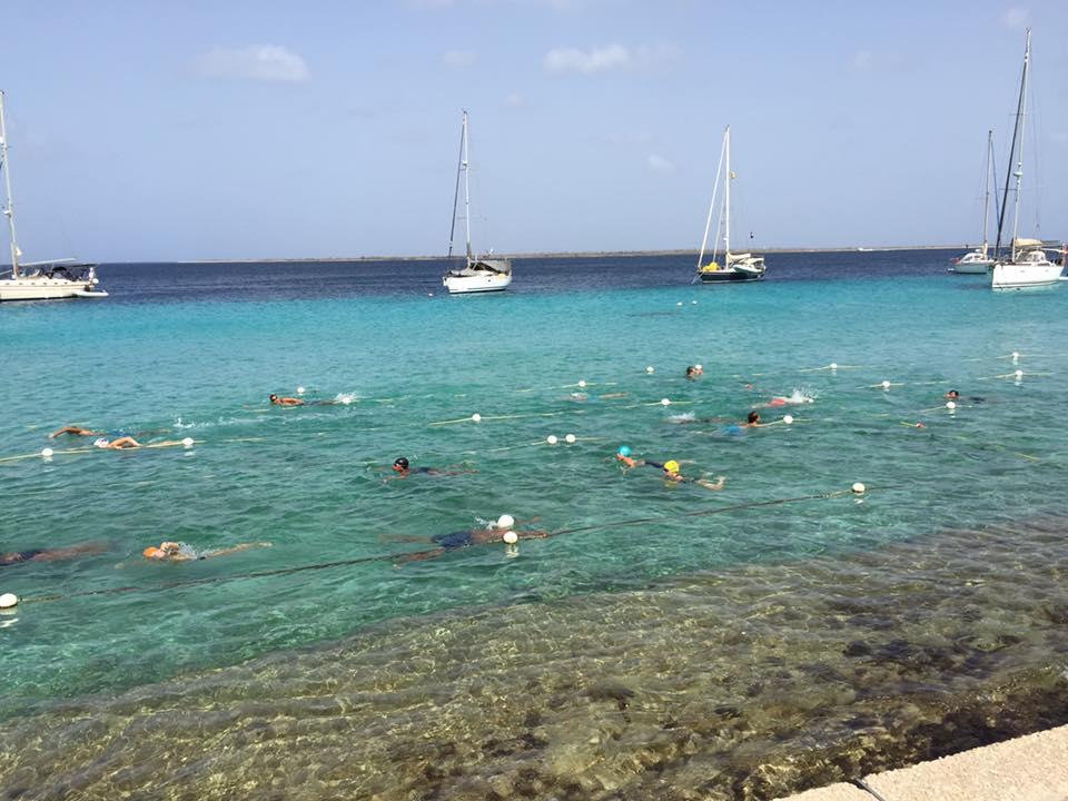 Barracudas Swim Training