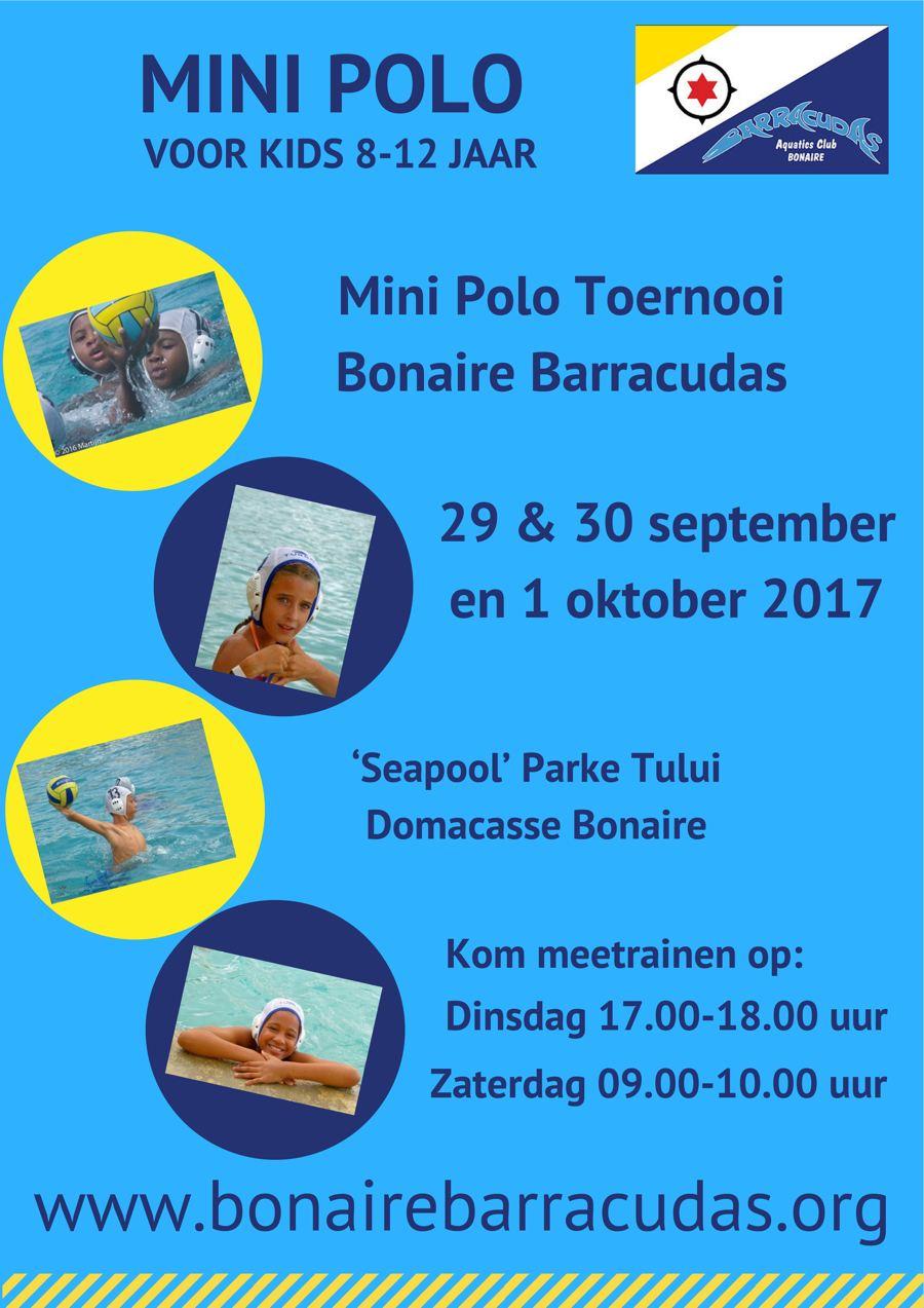 Mini Polo Tournament
