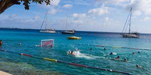 Seapool Barracudas Bonaire